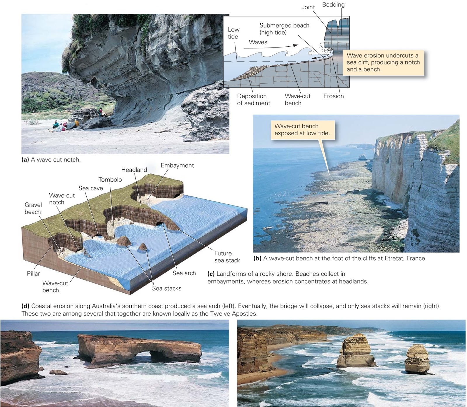 Coastal Landforms Learning Geology