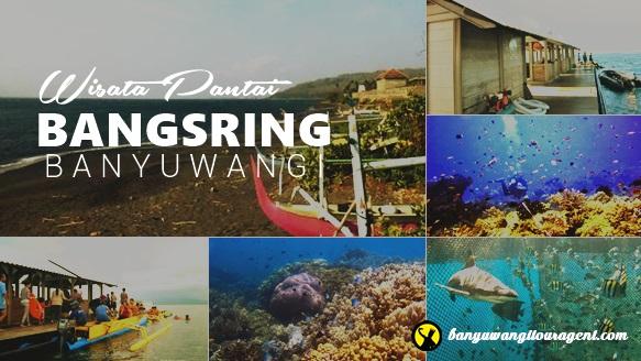 Pantai Bangsring Banyuwangi, Wisata Snorkeling Tercantik di Timur Pulau Jawa