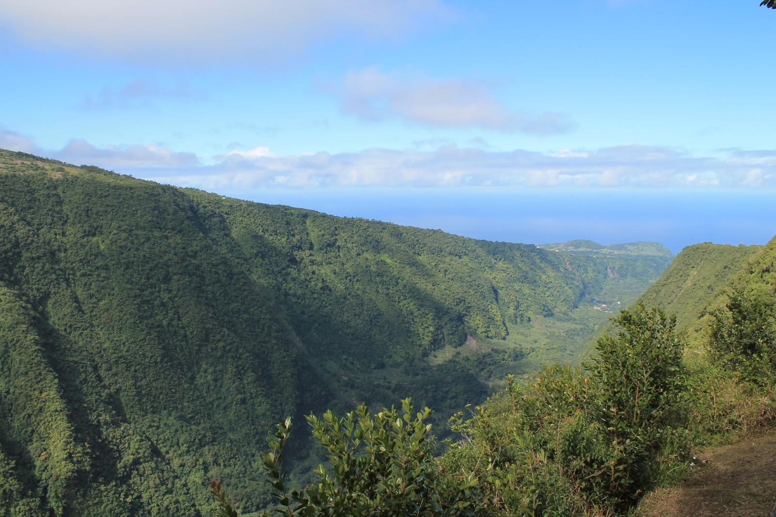 réunion île gotoreunion labyrinthe en champ thé tea grand coude visite à faire jumbocar irt tourisme 974 panorama point de vue rivière langevin ramparts