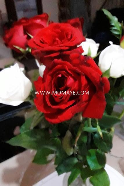 red roses, white roses, roses, wedding anniversary