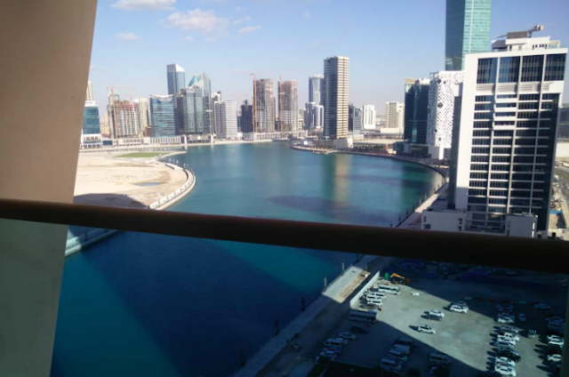 house sitting dubia opportunities