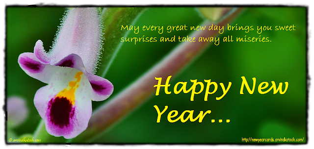 Happy New Year Card, New Year Card, New Year Wishes, Sweet Surprises, Great, New Day,