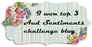 Top 3 at Aud Sentiments Challenge blog!
