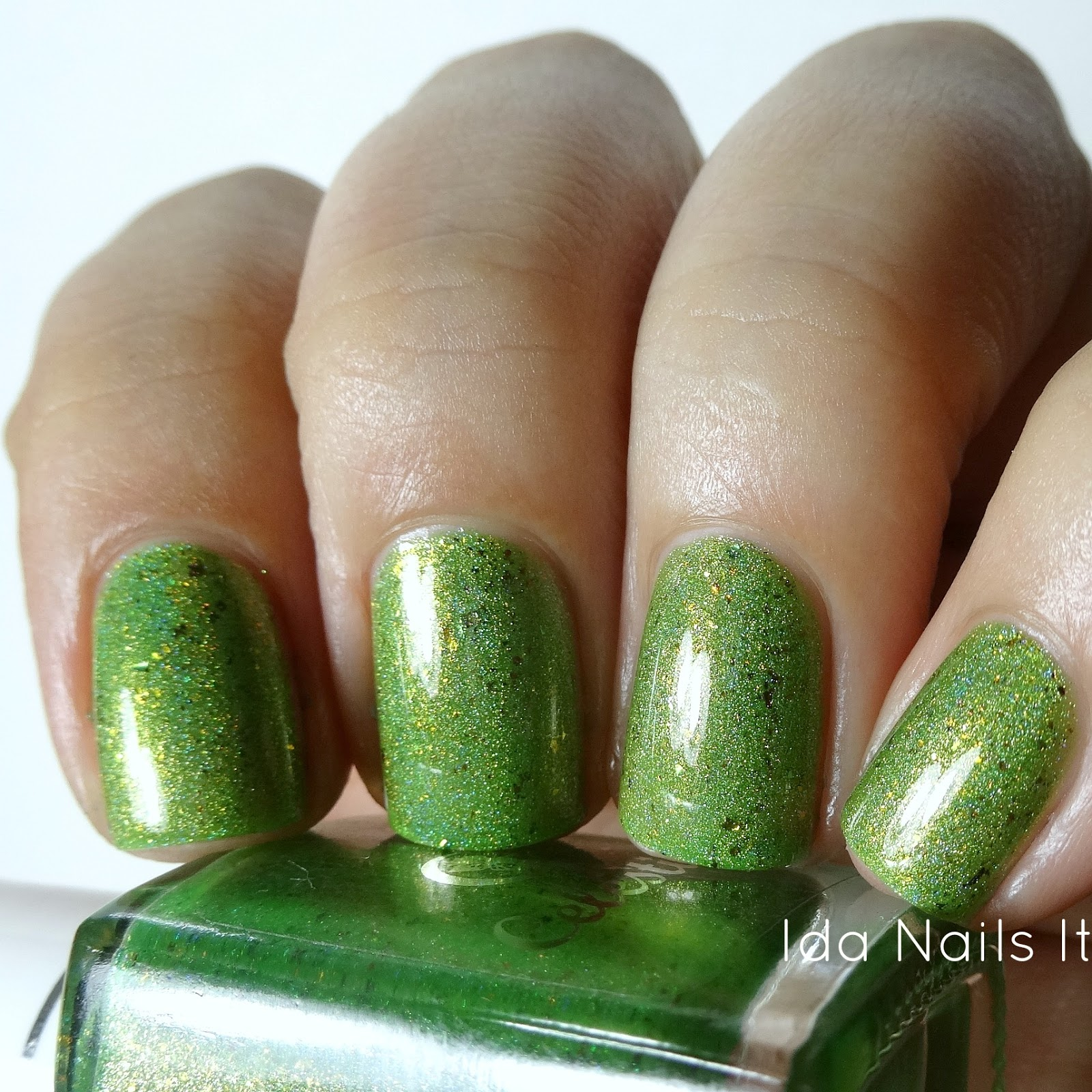 Ida Nails It: Celestial Cosmetics Pun-tastic Collection plus June LE ...