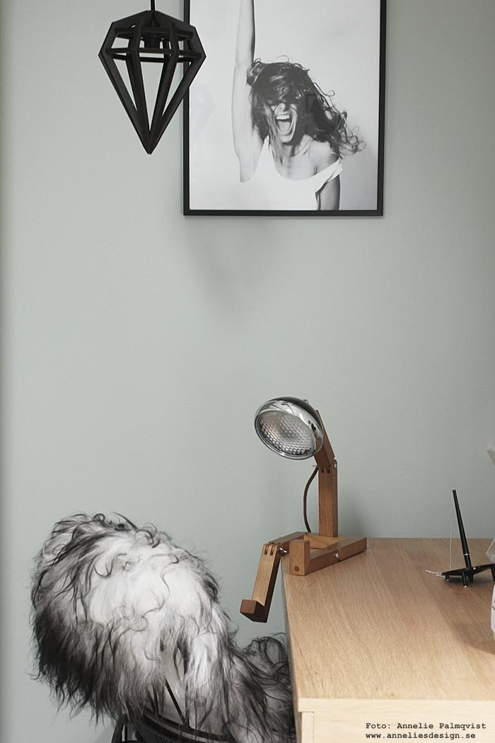 annelies design, webbutik, mr wattsson, lampa, lampor, sittande, fotokonst, tavla, tavlor, skrivbord, hubsch, hübsch, inredning, möbler, varberg, inredningsbutik, inredningsbutiker, presenttips, presentbutik, presentbutiker, fårskinn,