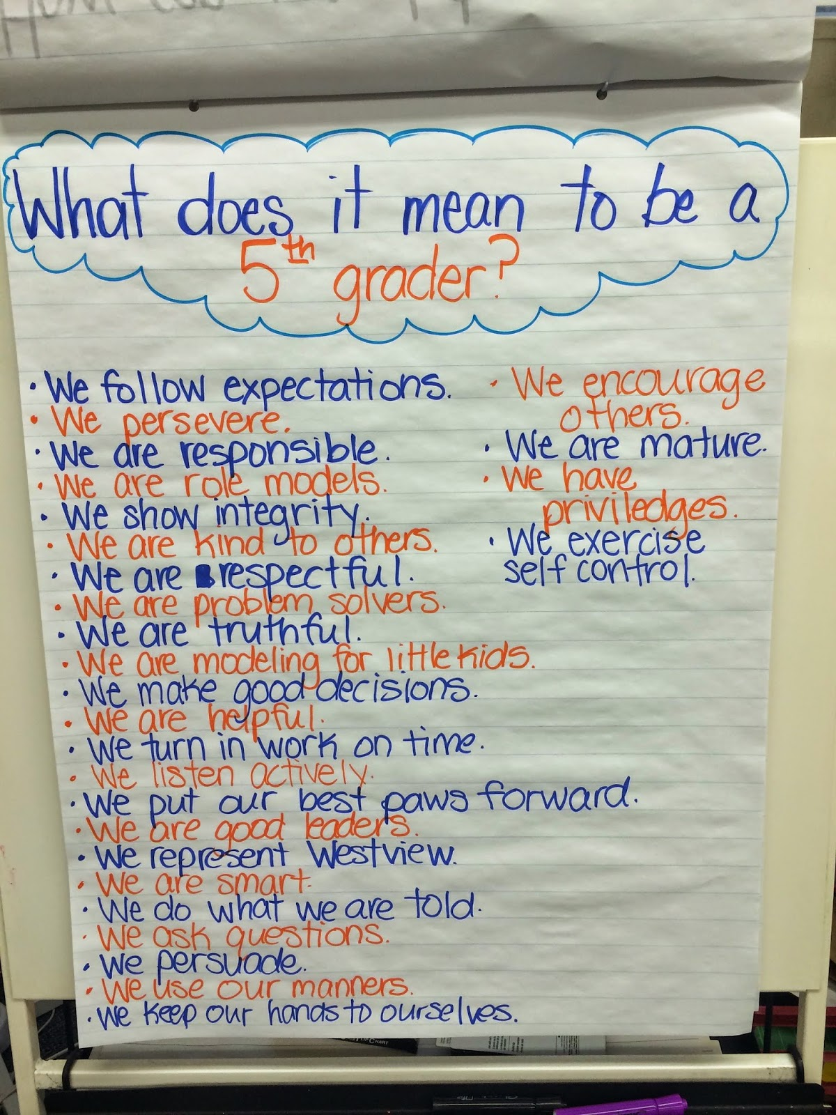 anchor chart of ideas: what does it mean to be a 5th grader?