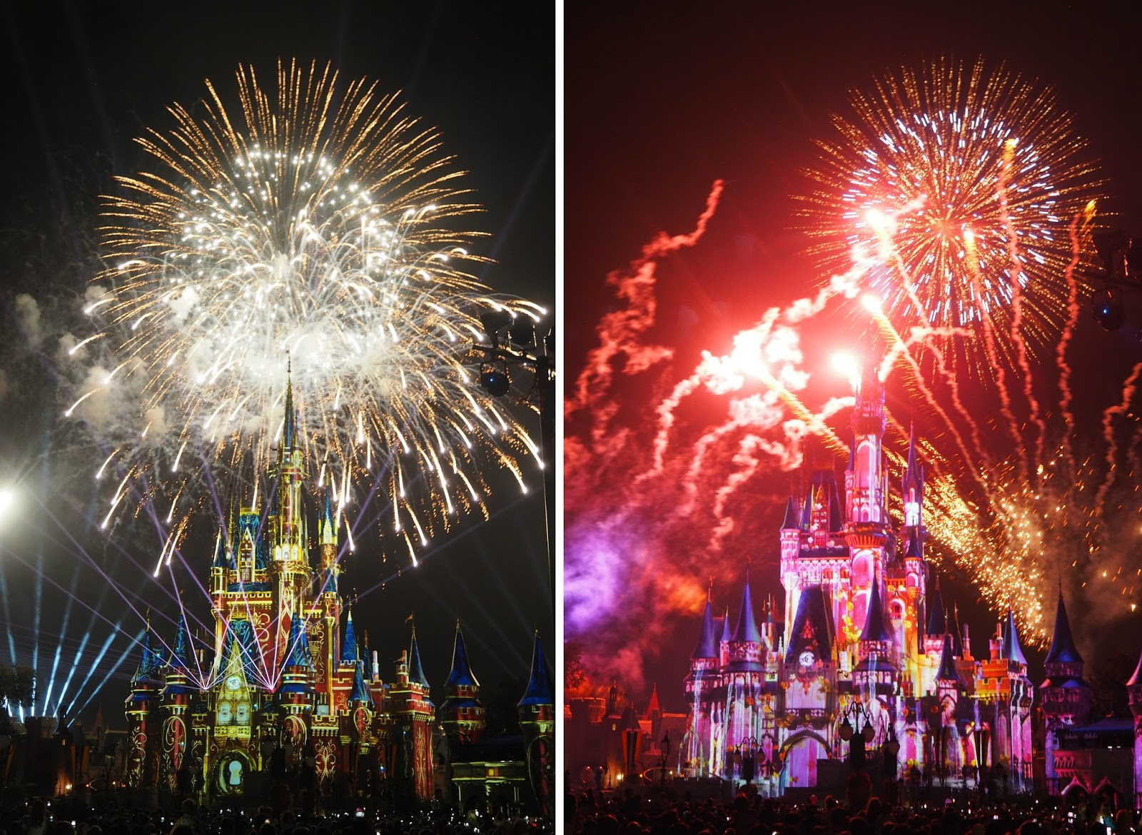 WHY WALT DISNEY WORLD IS THE BEST PLACE ON EARTH/EVERYTHING