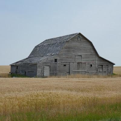 Fox Valley, Saskatchewan, barn, abandoned, grain, field