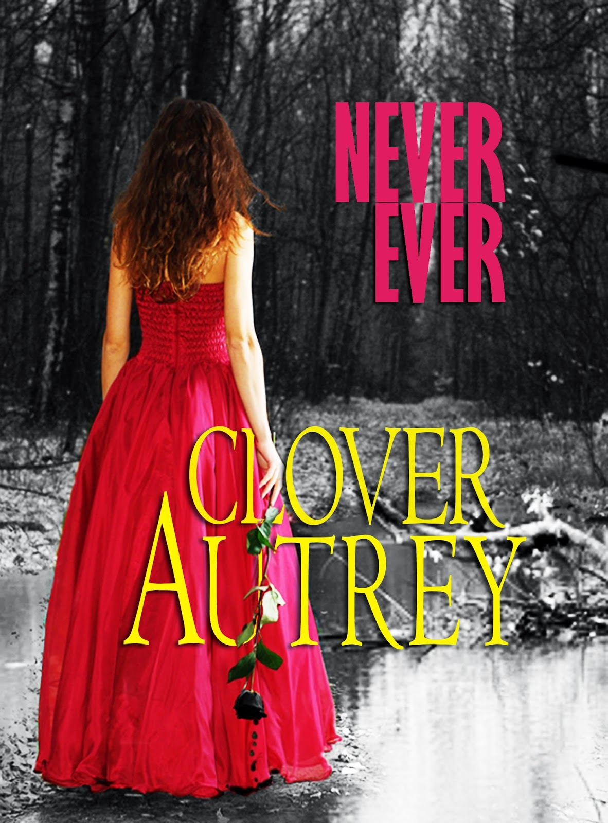 Never Ever book cover