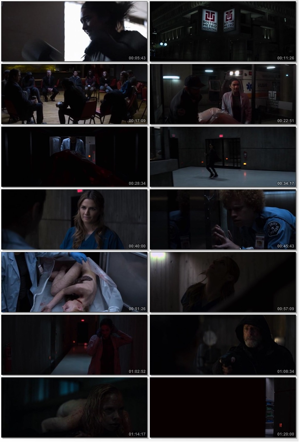 the possession of hannah grace full movie in hindi download 300mb
