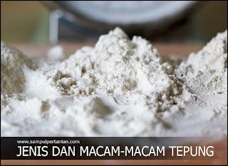 Jenis dan Macam-macam tepung yang mudah ditemui dipasaran