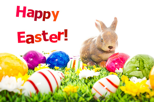 happy easter day photos 2017, rabbit image download, bunny easter images 2017