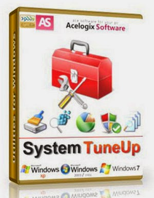Acelogix System Tuneup
