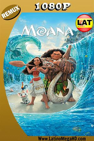 Moana (2016) Latino HD BDRemux 1080P ()
