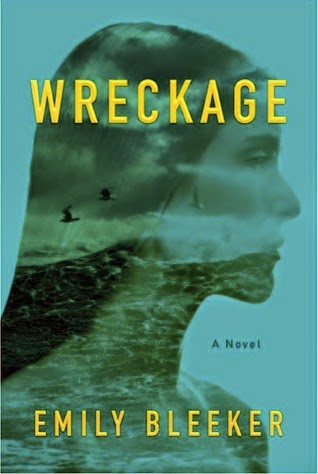 https://www.goodreads.com/book/show/23745132-wreckage