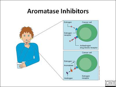 Kerja aromatase inhibitor (AI)