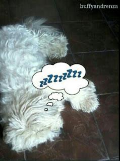 Buffy pretending to sleep