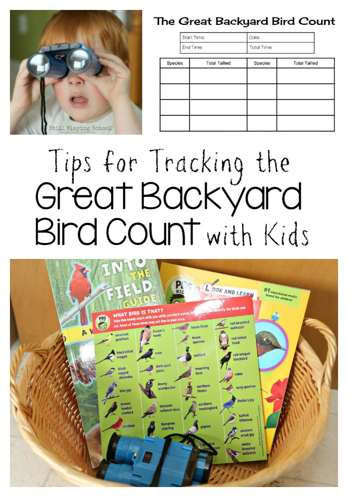 tips for the great backyard bird count with kids still playing