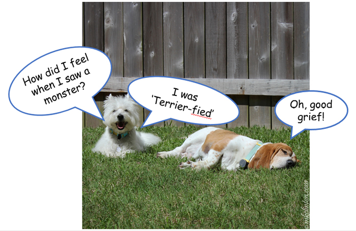 Terrier-fied joke featured a Westie and a Basset Hound
