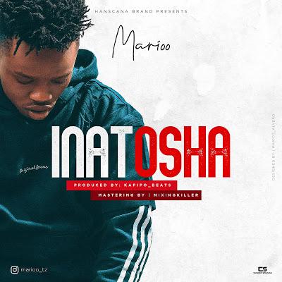 AUDIO   Marioo - Inatosha   Download [Music] Mp3