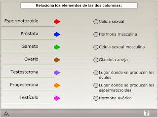http://www.edistribucion.es/anayaeducacion/8440134/recursos_and/U05/actividad5_2/index.html