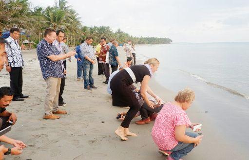 Sekda Selayar Bersama Tim CCRES, Lepas Puluhan Ekor Tukik Penyu