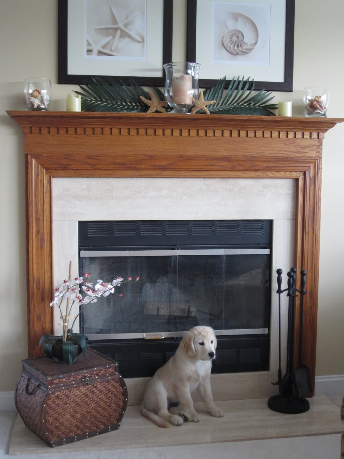 Builder Basic Fireplace with Oak Mantel