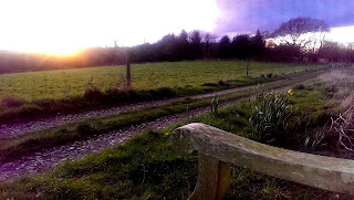 Spring sunset from the bench