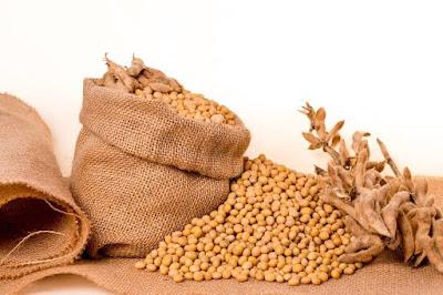 Khasiat dan Manfaat Minyak Kedelai Untuk Kesehatan Tubuh