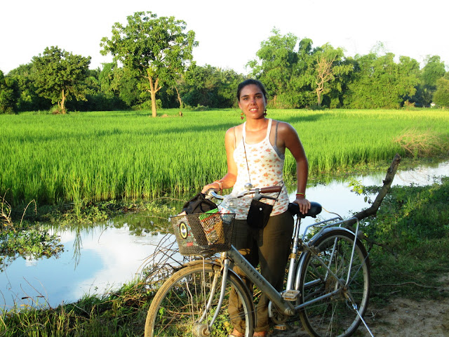 Mi bici y yo por los campos de arroz