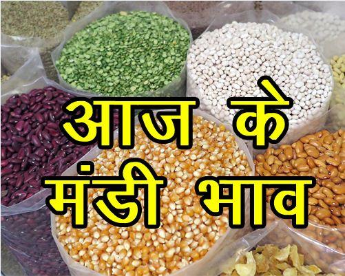 Online Mandsaur Mandi Latest Bhav