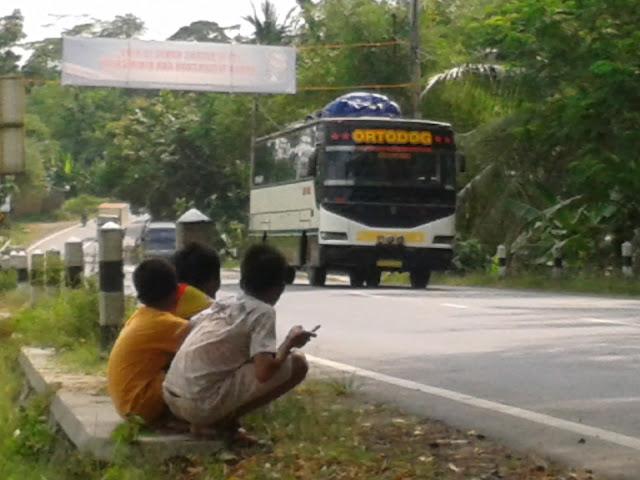 Bus Trayek Rute terjauh Di Indonesia