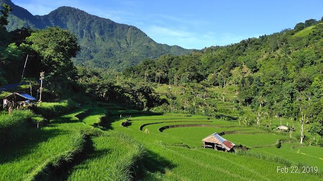 bangle village beautiful riceterrace