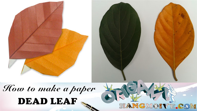 Cách gấp xếp, lá cây bằng giấy origami | How to make a paper dead Leaf