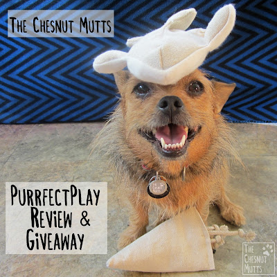 Purrfectplay review and giveaway