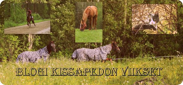 Blogi Kissapedon viikset