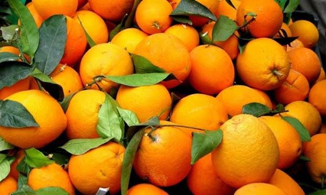 ΕΛΣΤΑΤ: Πρώτα τα πορτοκάλια σε αξία εξαγωγών το οκτάμηνο του 2018 - Αύξηση εξαγωγών φρούτων και  λαχανικών