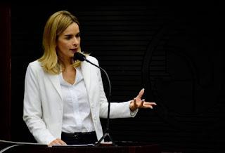 Deputada denuncia joguete político na votação de matérias da Câmara dos Deputados