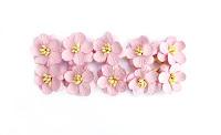 http://bialekruczki.pl/pl/p/Kwiaty-wisni-jasny-roz-10szt%2C-2%2C5cm-ScrapBerrys/2427
