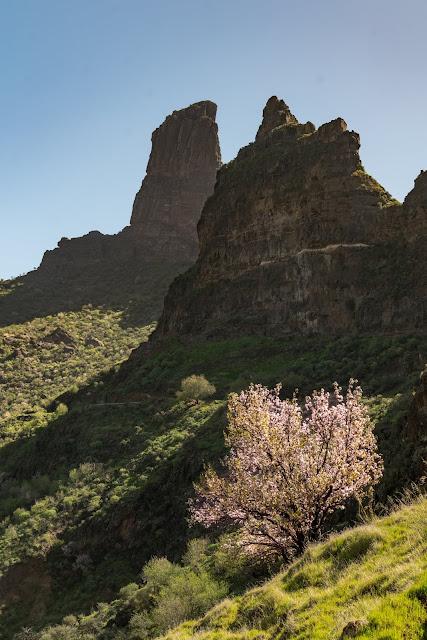 Die Top 30 Fotospots auf Gran Canaria  Strand, Natur und Sehenswürdigkeiten Gran-Canaria  Die besten Spots Gran Canaria - Roque Bentayga