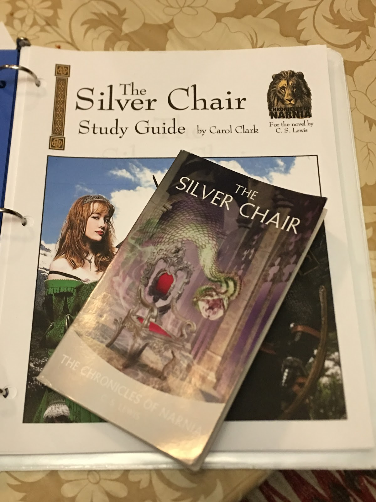 Adventures with Jude Progeny Press The Silver Chair Homeschool