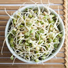 Ouw ... It Turns Out That Sprouts Beneficial More Than Male Sperm For Fertility