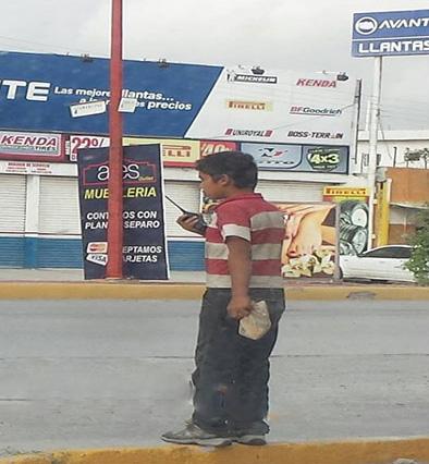 Diputados del PAN en Tamaulipas Buscan castigar 'halconeo' con Carcel