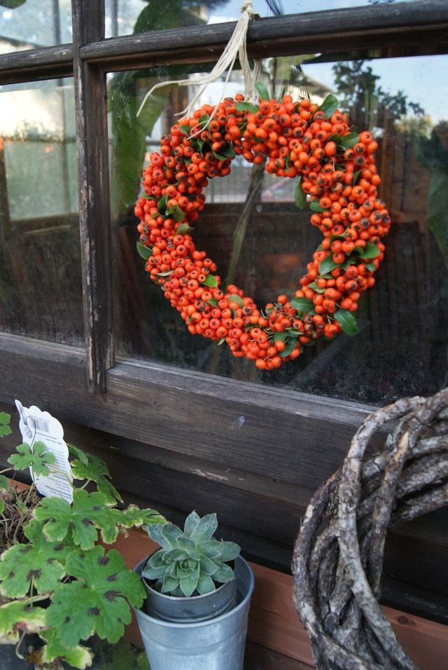 Feurdornkranz hängt im Fenster