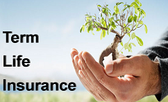 How to Choose a Right Term Insurance Plan For You