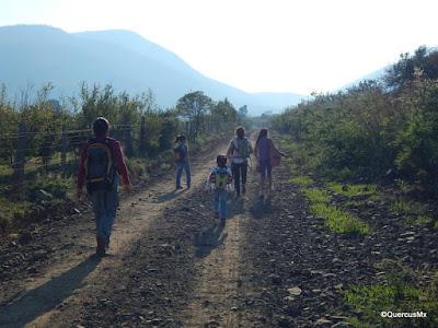 Caminando rumbo a la barranca El Zarco desde Las Trojes