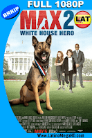 Max 2: White House Hero (2017) Latino Full HD 1080P - 2017