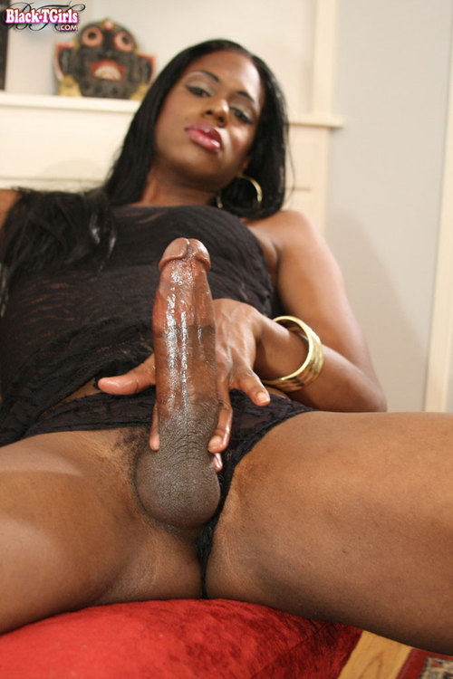 black female tranny gay sex