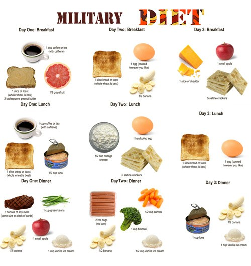 Military Diet Substitutions of Foods for Three Days