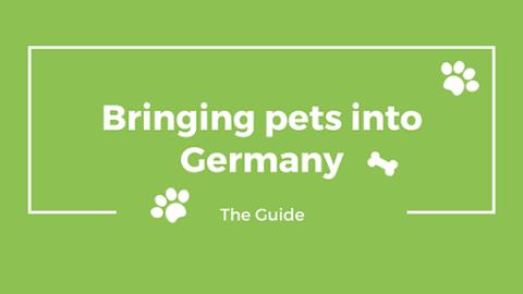Bringing pets into Germany